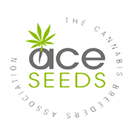 Image of Ace Seeds