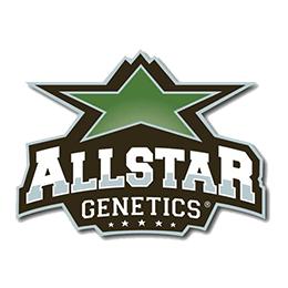 Image of Allstar Genetics