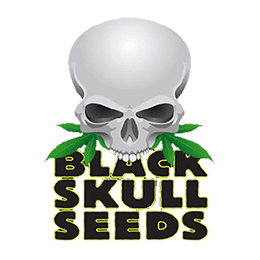 Image of Black Skull Seeds