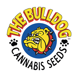 Image of Bulldog Seeds