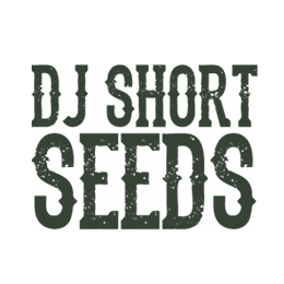 Image of DJ Short Seeds