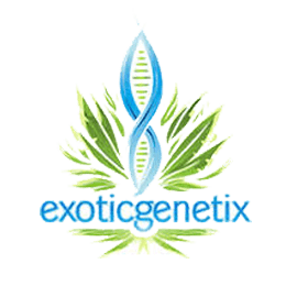 Image of Exotic Genetix