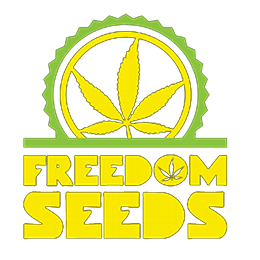 Image of Freedom Seeds