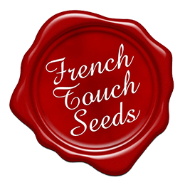 Image of French Touch