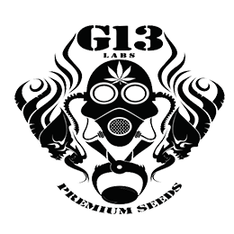 Image of G13 Labs