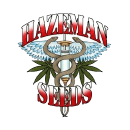 Image of Hazeman Seeds