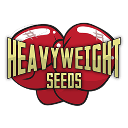 Image of Heavyweight Seeds