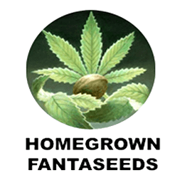 Image of Homegrown Fantaseeds