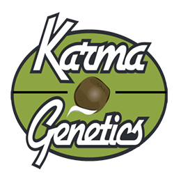 Image of Karma Genetics