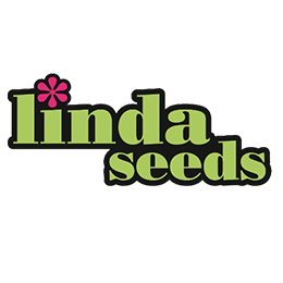 Image of Linda Seeds