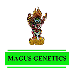 Image of Magus Genetics
