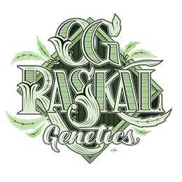 Image of OG Raskal Genetics