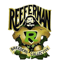 Image of Reeferman Seeds