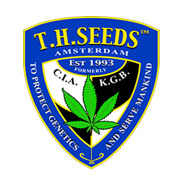 Image of TH Seeds