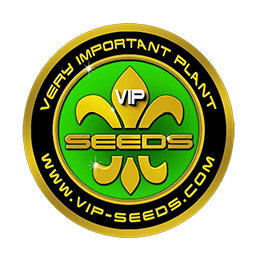 Image of VIP Seeds