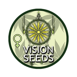 Image of Vision Seeds